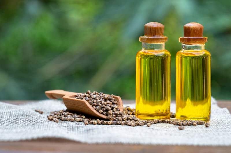 Nutzhanf-Samen sind die Grundlage für Hanföl